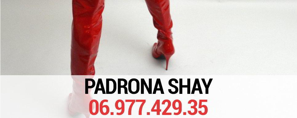 padrona-shay